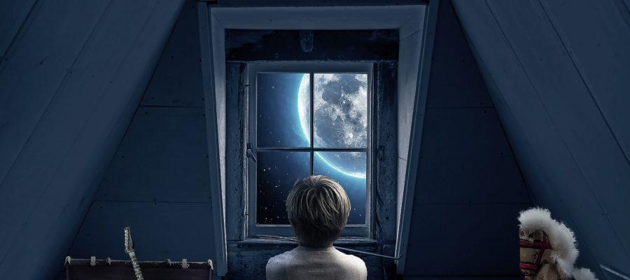 Dachfenster freien Blick